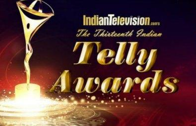 13th Indian Telly Awards (2014) Free Download In HD 480p 250MB